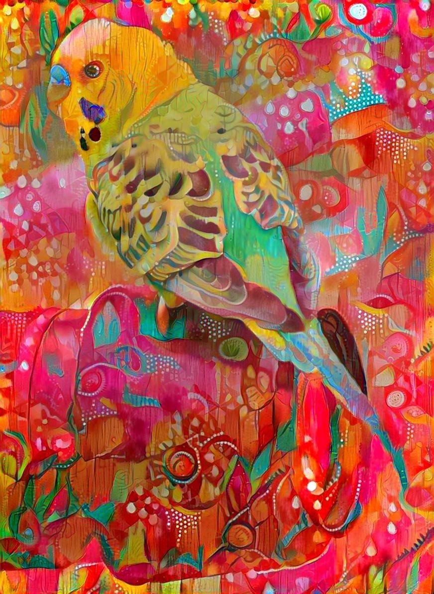 Parrot _6392