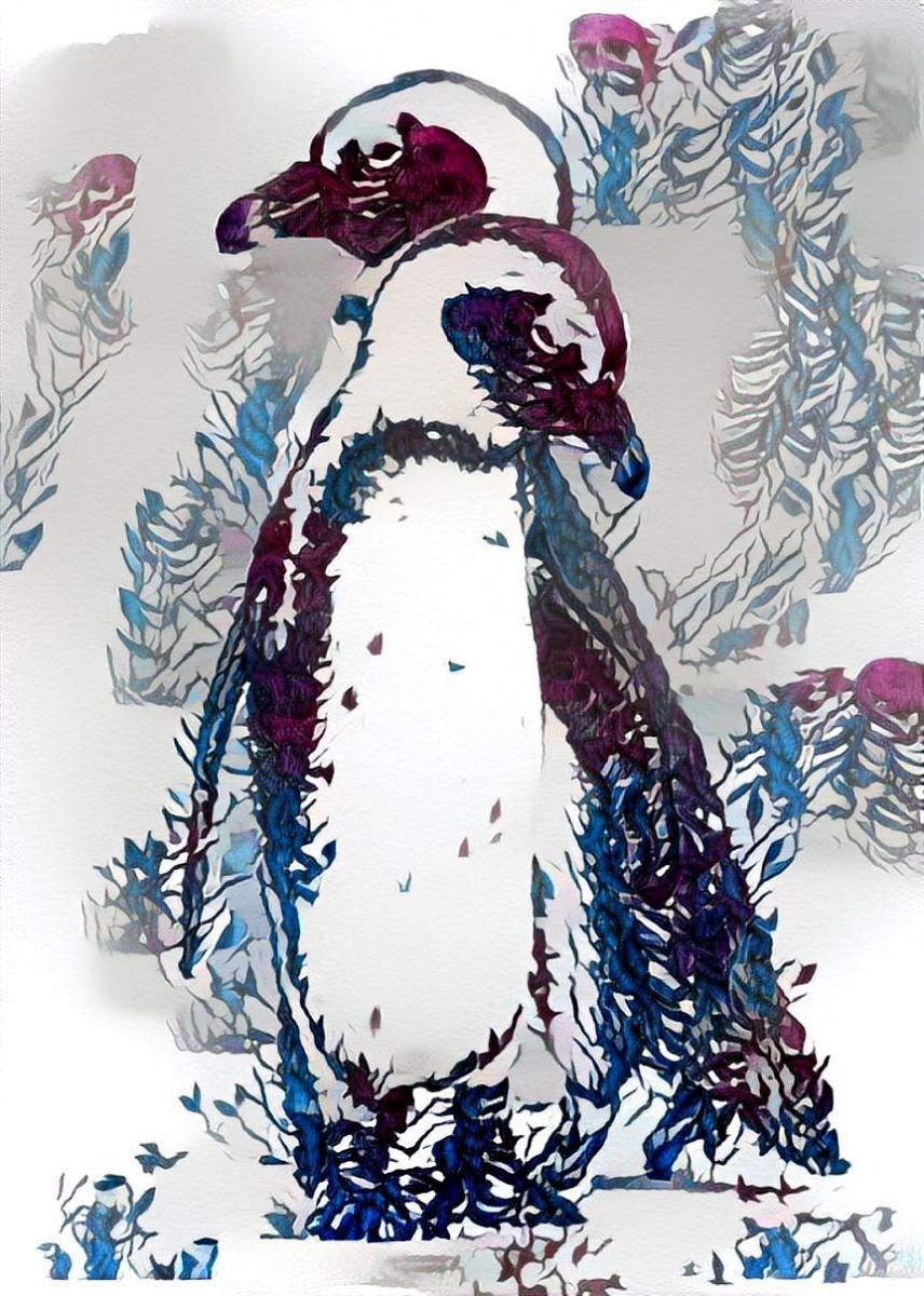 Penguins_6412