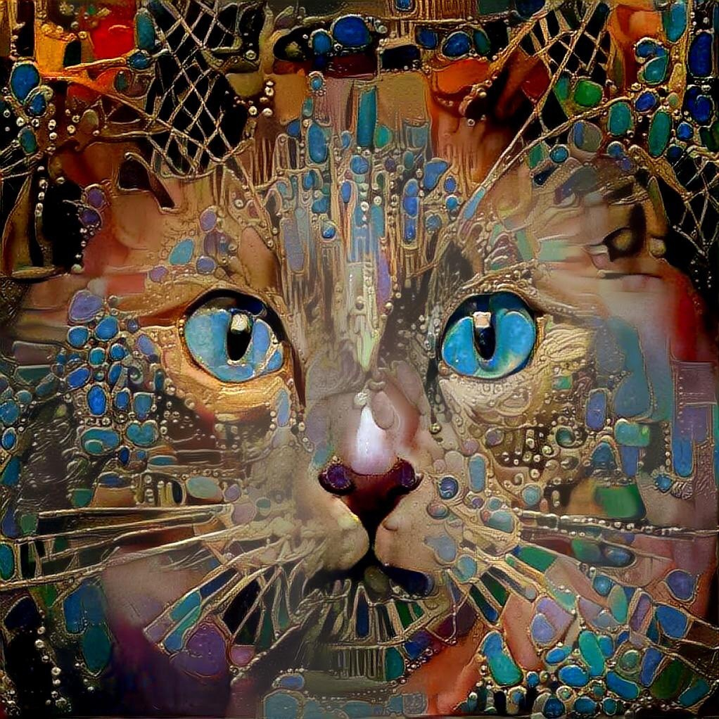 Cats_6506