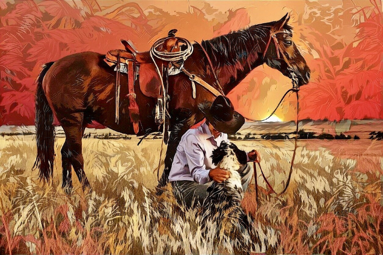 Cowboy_6511