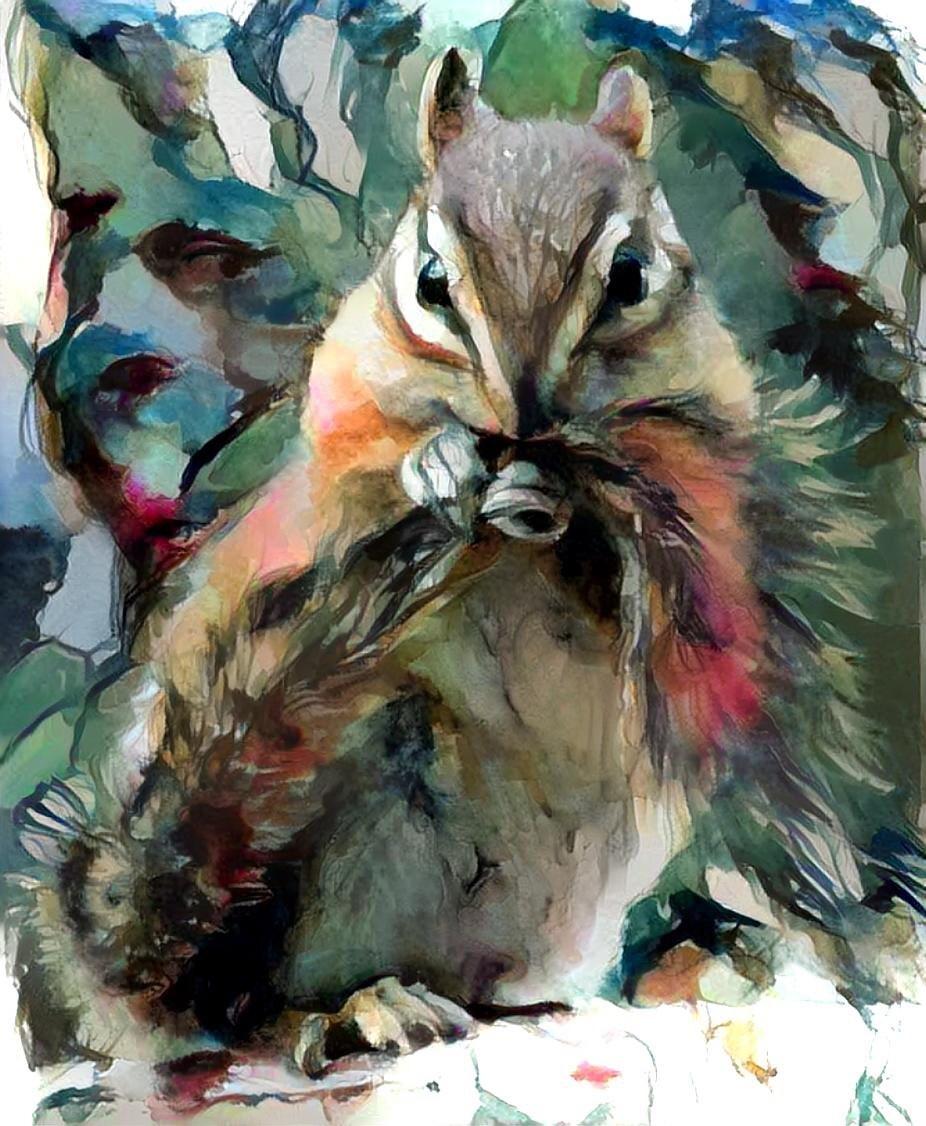 Squirrel _6720