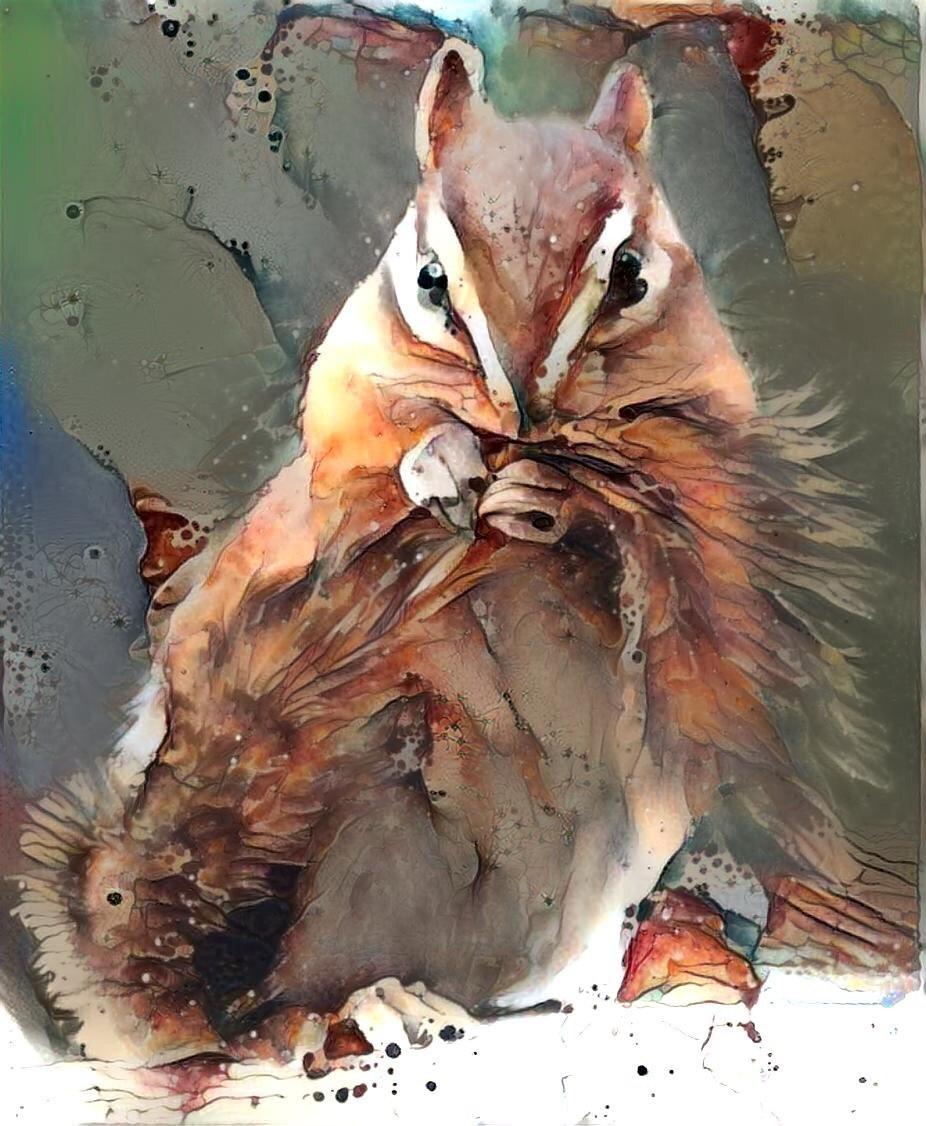 Squirrel _6723