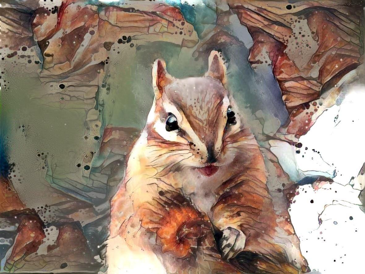 Squirrel _6724