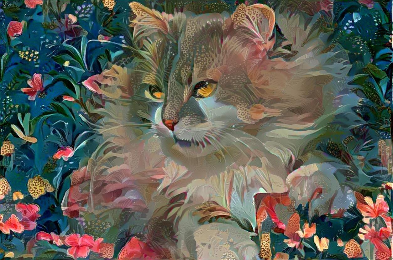 Cat_6936