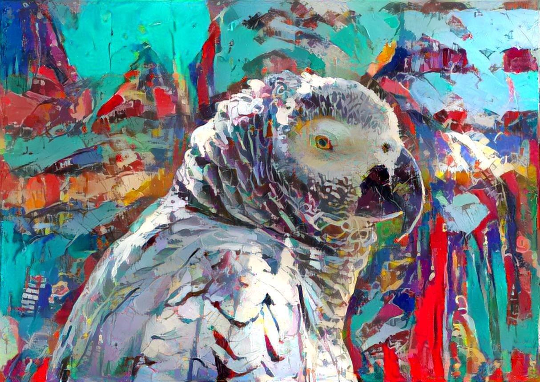 Parrot_6937