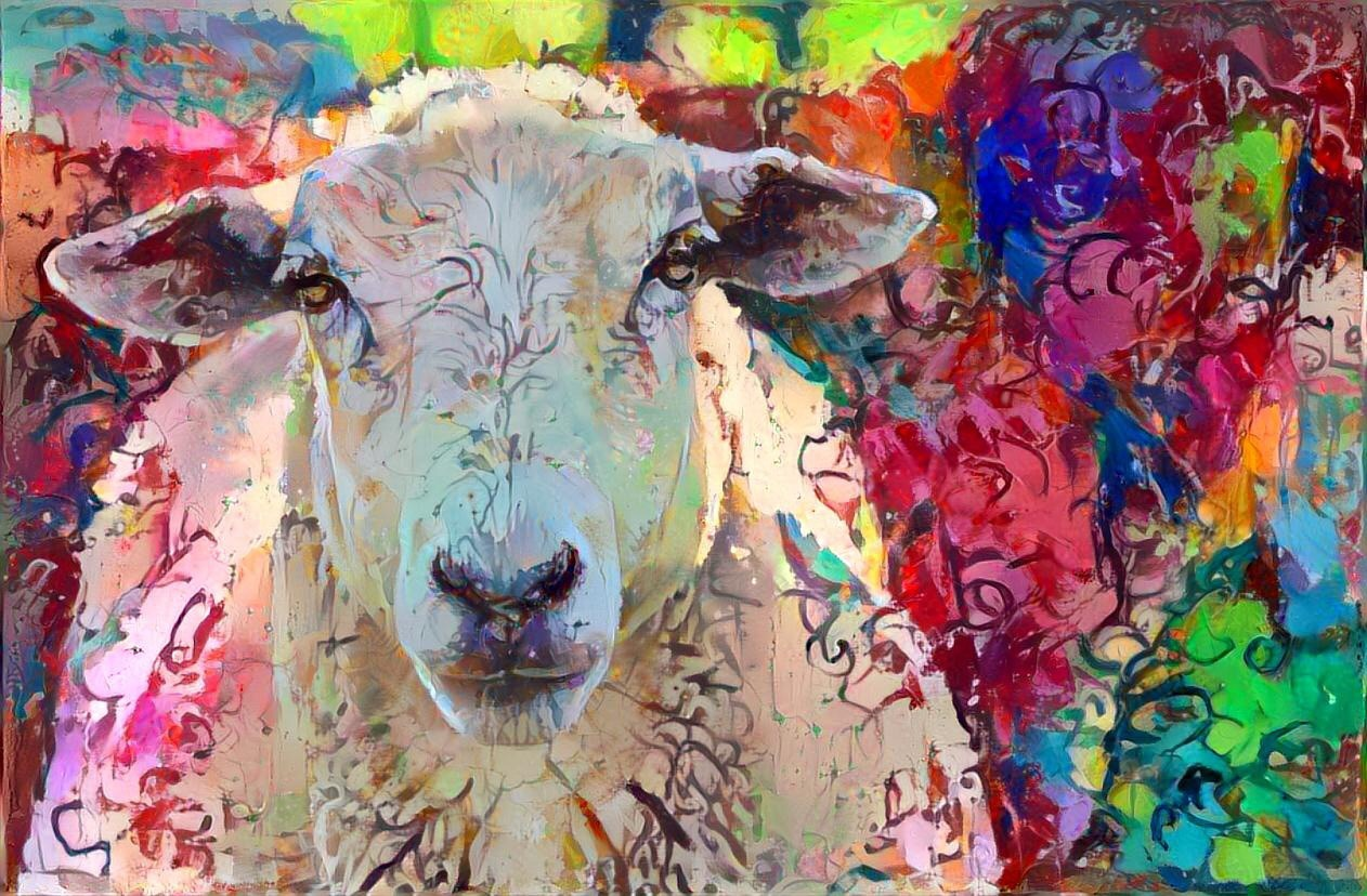 Sheep_6938