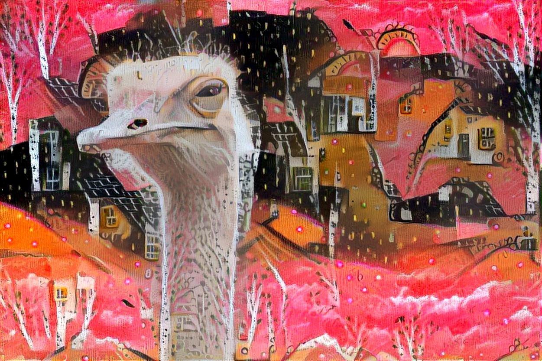Ostrich _7005
