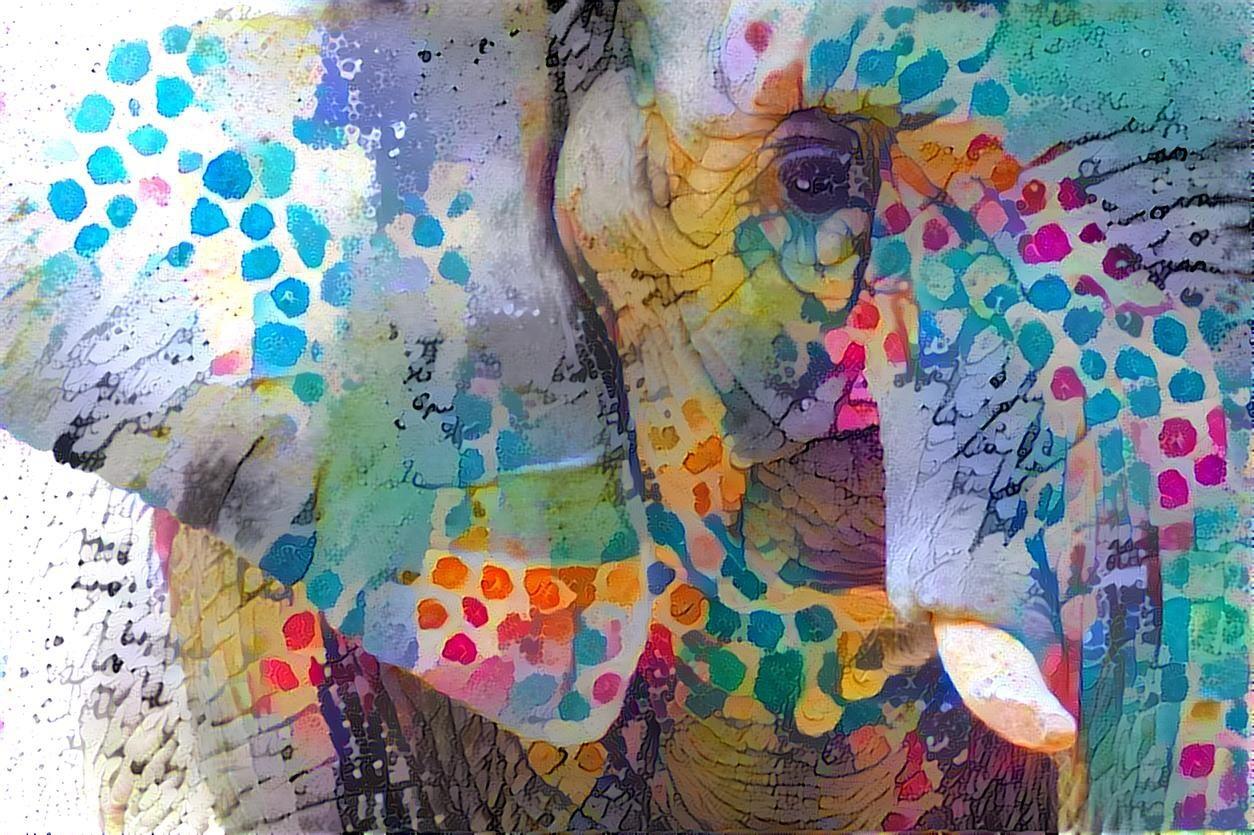 Elephant _7013
