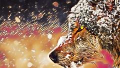 Wolf_0901