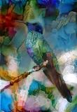 Bird_2069
