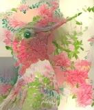 Bird_2077