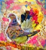 Bird_2933