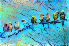 Birds_3690
