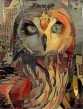 Owl_3742