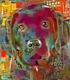 Dog_3861