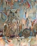 Owl_4010