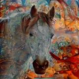 Horse_4078