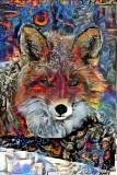 Fox_4256