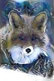 Fox_4258