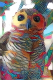 Owl_4289