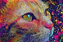 Cat_4297