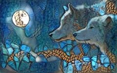 Wolf_4327