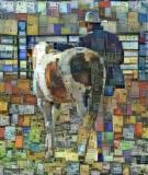 Horse_4335
