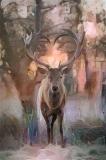Deer_4401