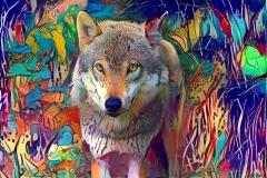Wolf_4421