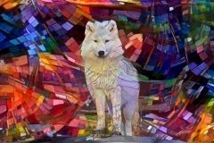 Wolf_4436