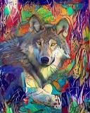Wolf_4438