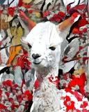 Llama _4458