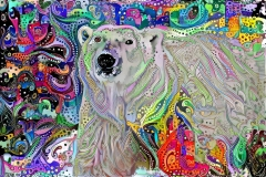 Polar Bear_4471