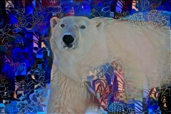 Polar Bear_4480