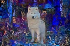 Wolf_4481