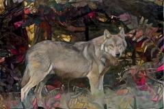 Wolf_4483