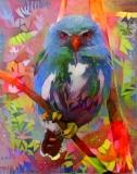 Owl_4525