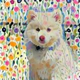 Dog_4688