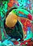 Parrot _5146