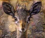 Deer_5177