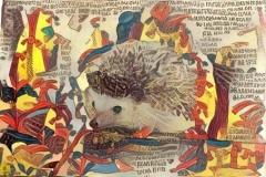 Hedgehog _5188