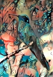 Birds_5402