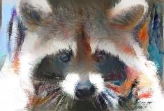 Raccoon _1420