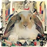 Rabbit_3504