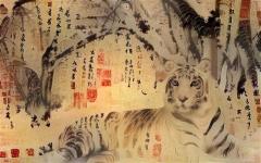 Tiger_3607