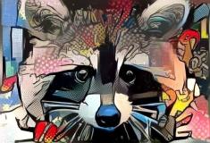 Raccoon_3844