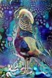 Bird_3878