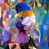 Bird_3966