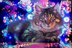 Cat_4299
