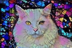 Cat_4300